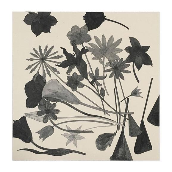【写真】【一点物】有瀬 龍介 「paper flowers」