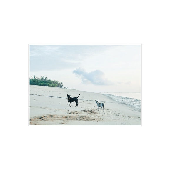 【写真】yansuKIM 「Indonesia」