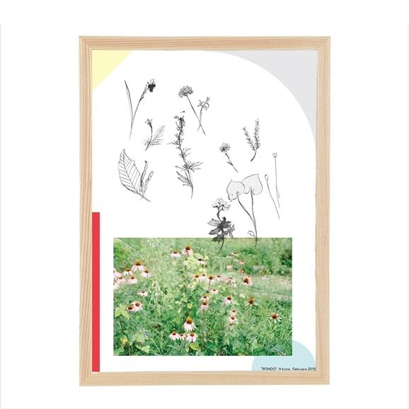 【写真】kvina 「庭、小鳥」