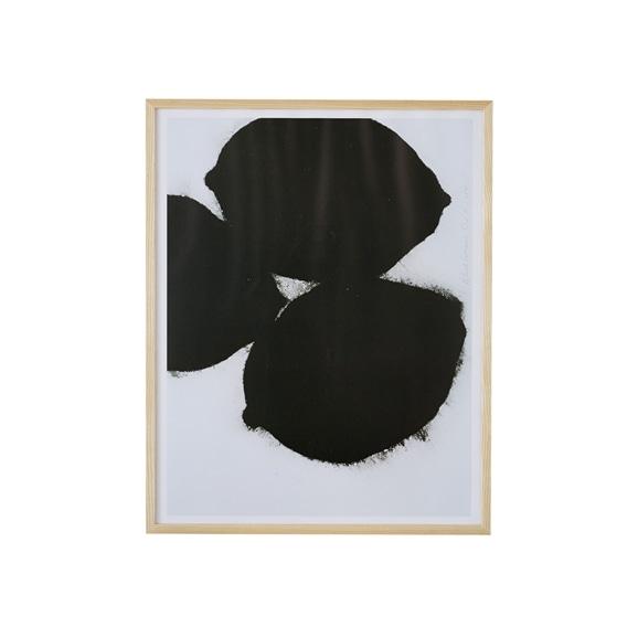 【写真】ドナルド・サルタン 「ブラックレモン」
