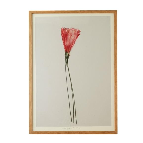 【写真】【一点物】山口一郎 「flowers-32」