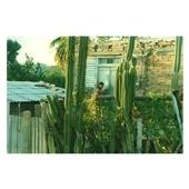 橋本 裕貴 「Cuba #06」