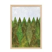 秋山 花 「FOREST」