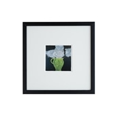 ドナルド・サルタン 「hydrangea in a green pot」